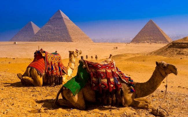 Egipto Imperial en Palacio | NAP LUXURY!!!