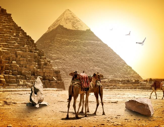 Club del single: Egipto y Dubai - NOVIEMBRE 2019