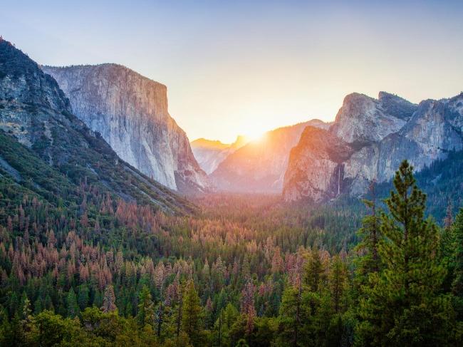 California Encantadora