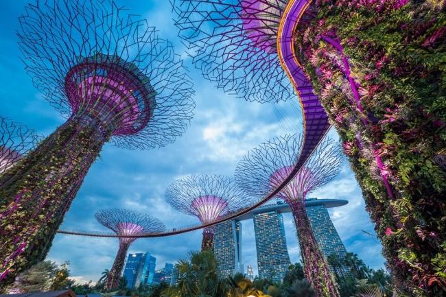 Kuala Lumpur, Singapur e Islas Maldivas