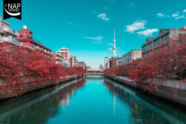 Gran Tour de Japon